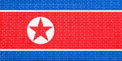 North Korean flag on brick wall texture, DPRK Stock Illustration
