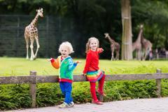 Kids watching giraffe at the zoo Stock Photos