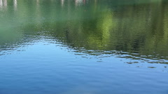 Beautiful views of forest lake with reflection of green trees and grass Stock Footage