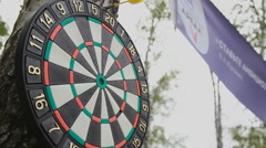 Darts hanging on a tree. A yellow dart hits in the dart Stock Footage