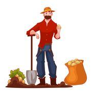 Man harvesting potato in the field Stock Illustration