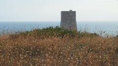 Watchtower in the field at sea Stock Footage