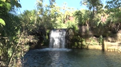 Waterfall in deep red gorge landscape in first morning sun surrounded by palm Stock Footage