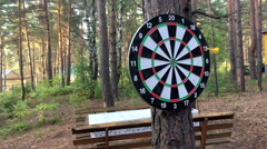 Game Darts in the woods Stock Footage