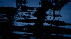 Moody Forest Reflection In Water At Night Stock Footage