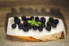 Blackberry view over wooden log Stock Photos