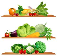 Fruits and vegetables on shelves Stock Illustration