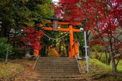 Red Torii gate to chureito pagoda Stock Photos