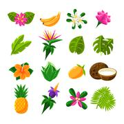 Tropical Exotic Fruits And Flora Set Of Icons Piirros