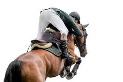 Horse Jumping, Equestrian Sports, Isolated on White Background Stock Photos