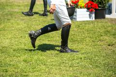 Equestrian Sports, Horse Jumping Stock Photos