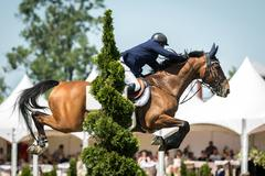 Equestrian Sports, Horse Jumping Kuvituskuvat