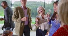 4K Smartly dressed group of mixed ages chatting at drinks party in modern home Stock Footage