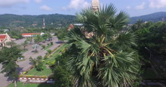 Sugar palm in fron of pagoda at Chalong temple Stock Footage