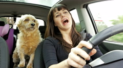 Beautiful woman driving car dancing with dog slow motion 4K Stock Footage
