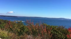 New England foliage Acadia National park trees from car Stock Footage