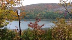 New England foliage Stock Footage
