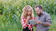 Colleagues farmers work with the tablet around cornfield Stock Footage