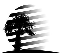 Silhouette of Palm Trees. Vector Illustration Stock Illustration