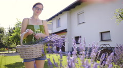 Woman hold basket with lavender on home backyard 4K Stock Footage