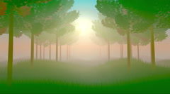 Morning forest misty grass gives chill Stock Footage