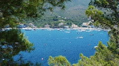 Beautiful view of the sea with yachts and boats. In the foreground trees. On the Stock Footage