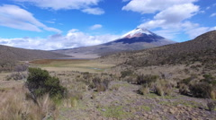 Cotopaxi from behind the Brush Stock Footage
