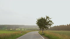Road with a tree. The idealistic picture. Stock Footage