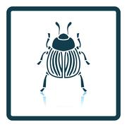 Colorado beetle icon Stock Illustration