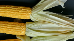 4K Dolly, Fresh corn on black background, Top view Stock Footage