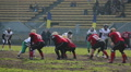 Amateur American football match, active players lined up in pre-snap formation HD Footage