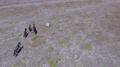 Wild Horses - 5 Running Stock Footage