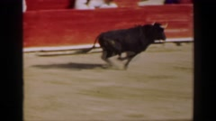 1948: Bull animal charging man behind wall rodeo bullfighting stadium arena Stock Footage