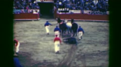 1948: Classic torero bullfight slayed animal dead corpse dragged away from Stock Footage