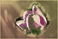 Vivid violet tulip, macro, spring Stock Illustration