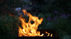 Fire flaming in the  brazier Stock Footage