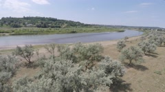 Summer landscape on the banks of the green river. drone shooting. Stock Footage