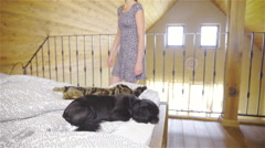 Woman throwing-up sleeping animals on bed while tidying 4K Stock Footage