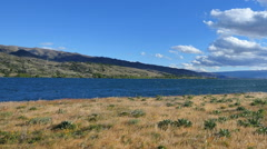 New Zealand grass by Lake Dunstan pan Stock Footage