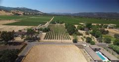 Aerials of Vineyard in Sonoma Stock Footage