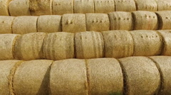 Business man with a laptop resting on straw bales. Flying drone. Ecology Stock Footage