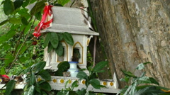 Old Jungle Spirit house, Thailand Stock Footage