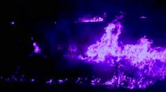 Purple Tongues of Flame Move Upward in the Darkness Closeup Stock Footage