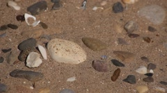 Collecting pebbles Stock Footage