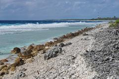 Sea shore Tiputa atoll Rangiroa French Polynesia Stock Photos