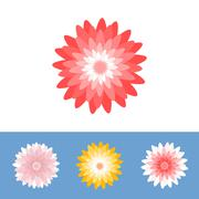 Vector flower, Chrysanthemum, gerber daisy, flat design Stock Illustration