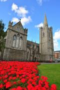 Saint Patrick's Cathedral in Dublin and bright red flowerbed. Stock Photos