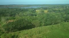 Belize Jungle Aerial Stock Footage
