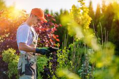 Garden Design with Tablet Device. Stock Photos