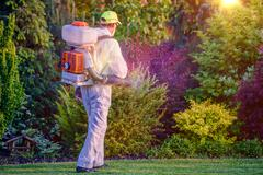 Pest Control Garden Spraying by Professional Gardener Stock Photos